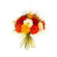 Bouquet Colorido