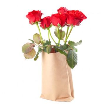 Sete Rosas